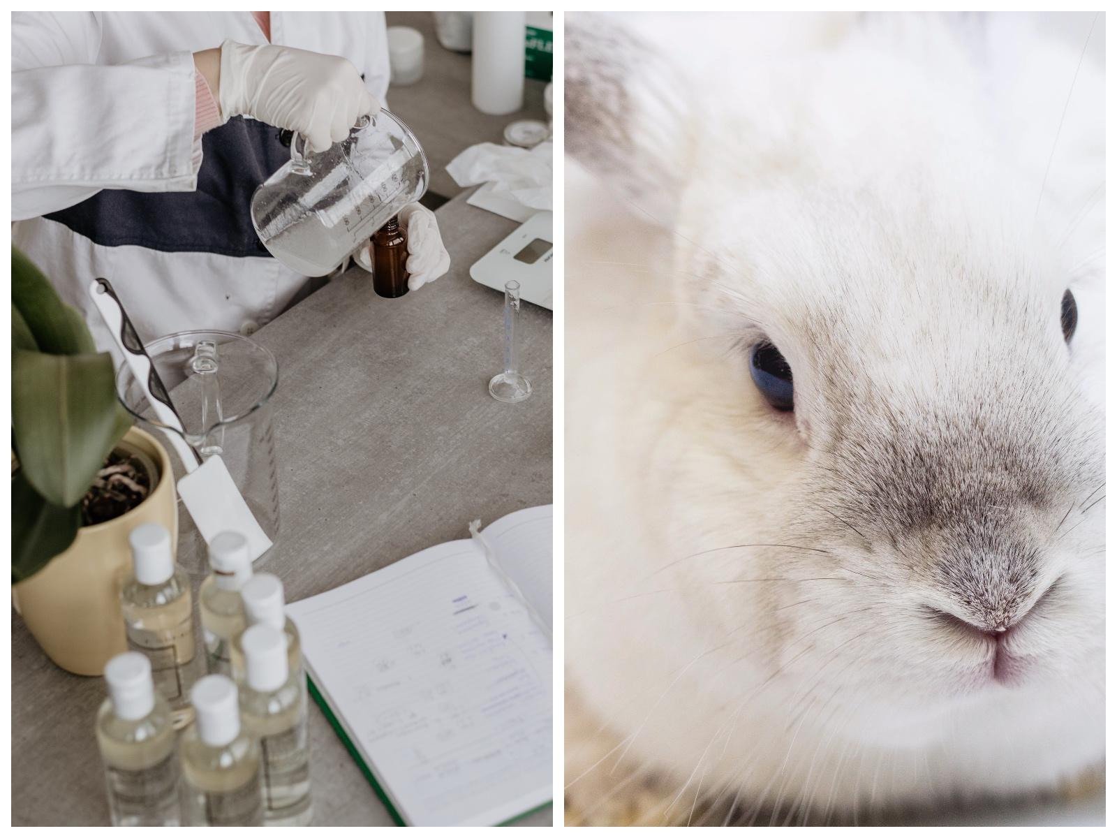 cruelty free chiny rezygnują ztestowania kosmetyków nazwierzętach