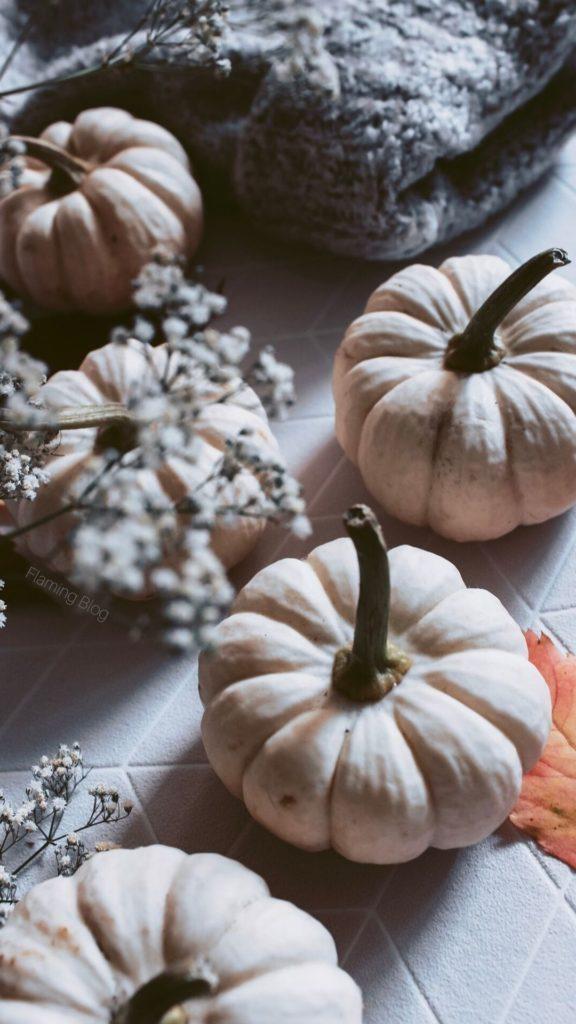 Tapeta natelefon jesień 2019 październik listopad