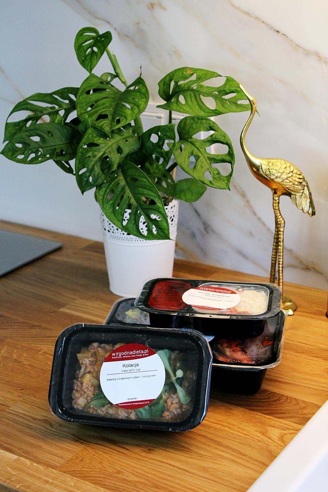 catering wygodna dieta blog