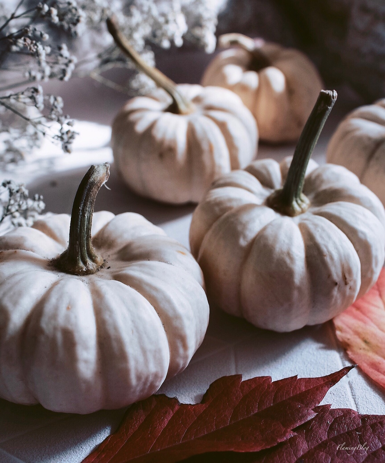 za co warto kochać jesień - dynie